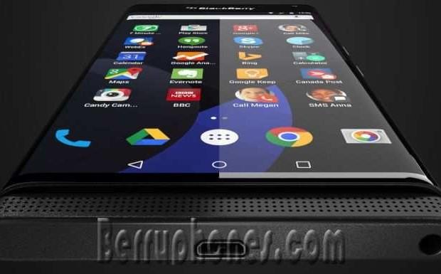 Blackberry Venice Terbaru